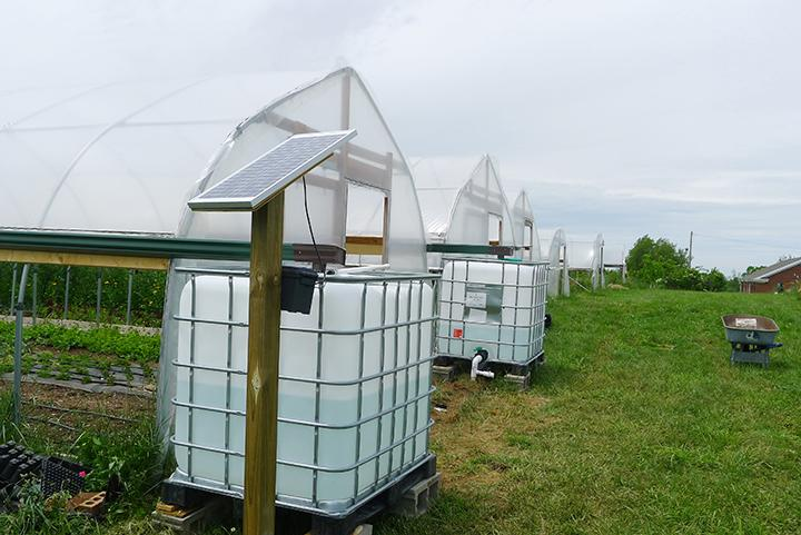 Brent Rowell advised the installation of rainwater catchment and solar + gravity-fed drip irrigation systems for high tunnels at GreenHouse 17 in Lexington.