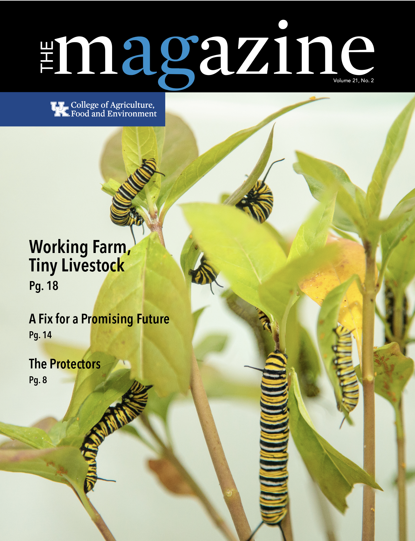 Fall Magazine 2019 with photo of insects
