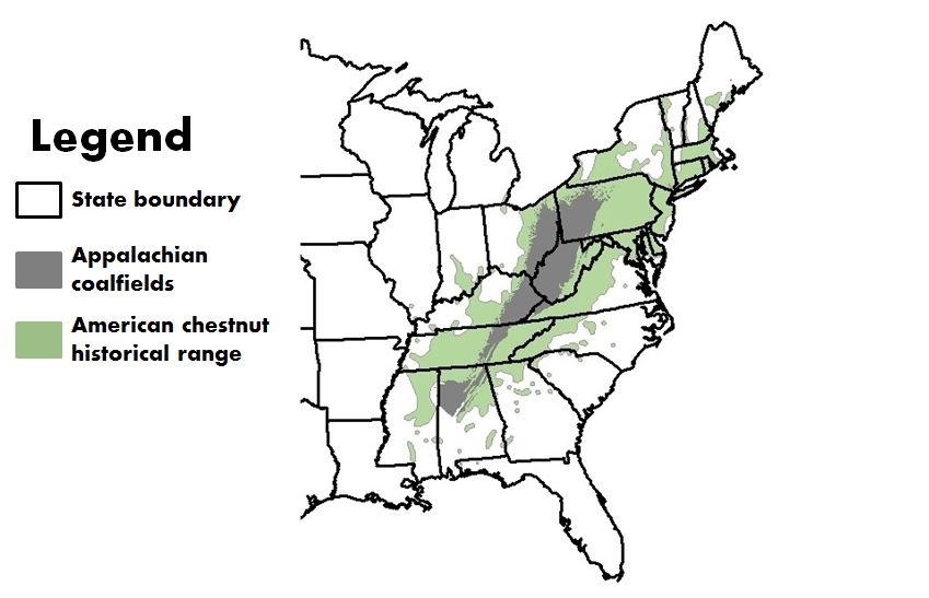 "Graphic of a map with legend ""The heart of the American chestnut's range corresponds with the Appalachian Mountain coalfields."""